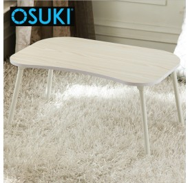 OSUKI Portable Foldable Laptop Table